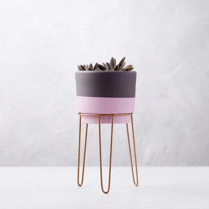 Artisan Terracotta Planter - Pink & Gray