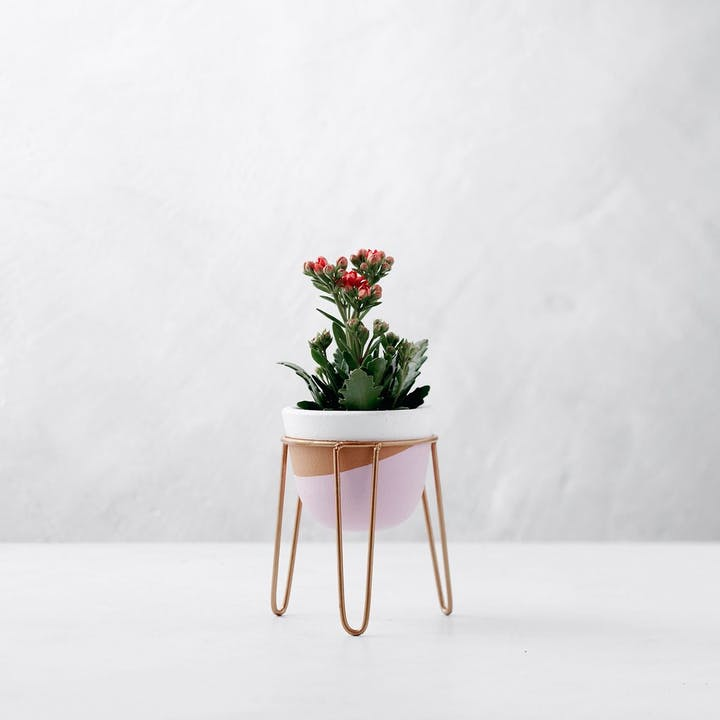 Artisan Terracotta Planter - Pink & Tan